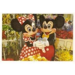 Walt Disney World Magic Kingdom Main Street Flower Market 4x6 Postcard