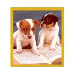 Magnetic Bookmark Jack Russell Smart Puppies, Beautiful and Colorful