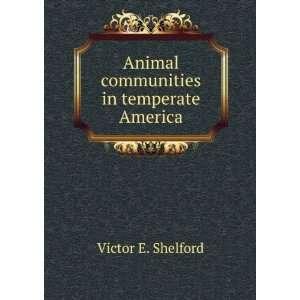 Animal communities in temperate America Victor E. Shelford Books
