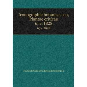 Iconographia botanica, seu, Plantae criticae. 6;v