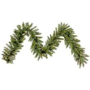 9 X 14 Augusta Pine Christmas Garland & Dura Lit 100