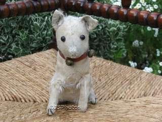 Antique Steiff Fox Terrier Dog 1903   1904 No IDs
