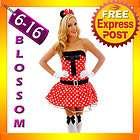 Minnie Mickey Mouse Fancy Dress Halloween Disney Theme Costume & Ears
