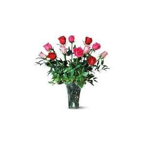 One Dozen Long Stem   Pink and Red Roses: Grocery & Gourmet Food