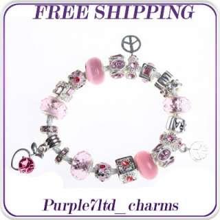 1pc pink cats eye lampwork silver pendant European beads charm