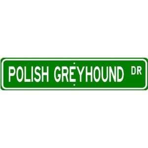 Polish Greyhound STREET SIGN ~ High Quality Aluminum ~ Dog