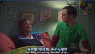 New Sheldon Cooper The BIG BANG THEORY Soft Kitty Warm KittyT Shirt