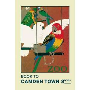 London Zoo Exotic Birds   Poster by Weeks (12x18) Home