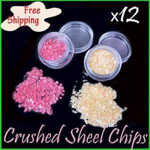 NEW 12 COLOR CRUSHED SHELL POWDER NAIL ART TIPS DECORATION 3D UV GEL