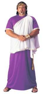 Plus Size Julius Caesar Costume   Roman Costumes