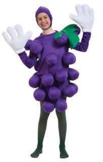 Purple Grapes Costume   Family Friendly Costumes