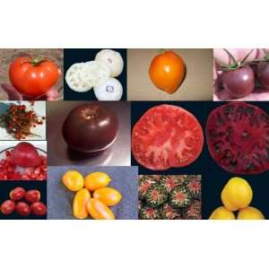 PACK   HEIRLOOM, ORGANIC, AQUAPONIC VEGETABLES: Patio, Lawn & Garden