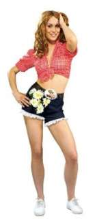 Dukes Of Hazzard Daisy Duke Costume Adult: Clothing
