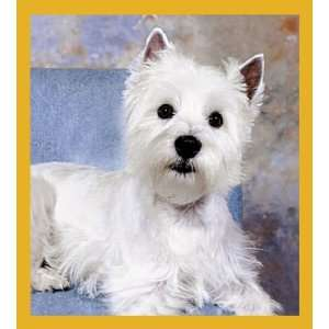 Westie West Highland Terrier High Quality Modern Design Beautiful