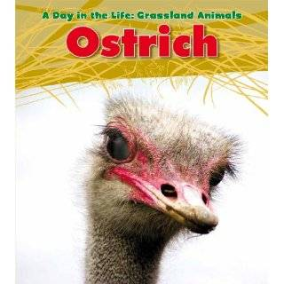 (Heinemann Read and Learn: a Day in the Life: Grassland Animals